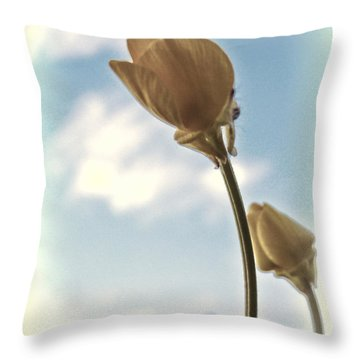 Throw Pillow featuring the photograph Buttercup Stretch by Beth Sawickie