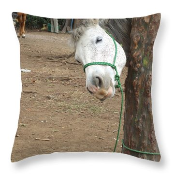 Caballito Throw Pillow