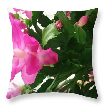 Throw Pillow featuring the photograph Cactus Flower by Rose Wang
