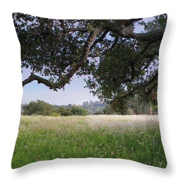 California Landscape Throw Pillow