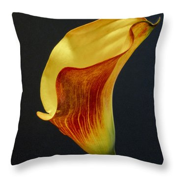 Calla Lilly Throw Pillow by David and Carol Kelly