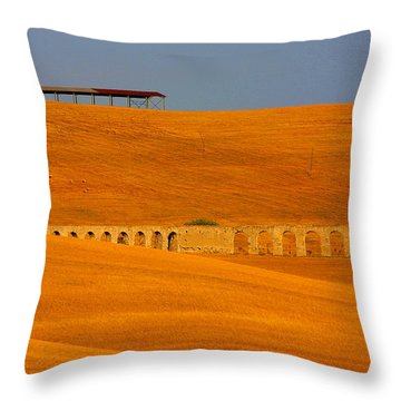 Tarquinia Landscape Campaign With Aqueduct Throw Pillow