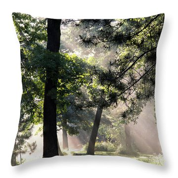 Campgrounds Throw Pillow