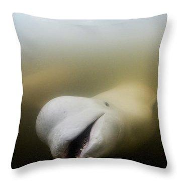 Beluga Throw Pillows