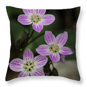 Carolina Spring Beauty Throw Pillow