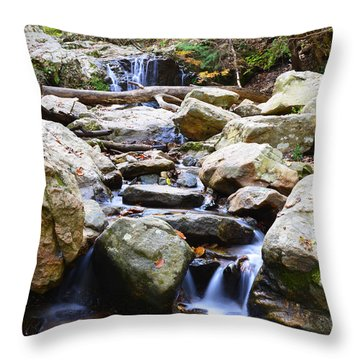 Throw Pillow featuring the photograph Cascade Falls by Dana Sohr