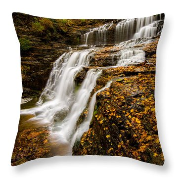 Cascadilla Gorge Throw Pillow