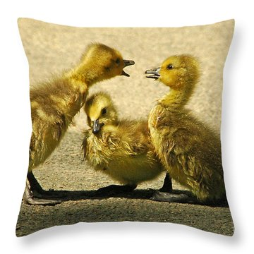 Throw Pillow featuring the photograph Caught In The Middle by Olivia Hardwicke
