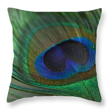 Center Of Attention Throw Pillow by Fraida Gutovich