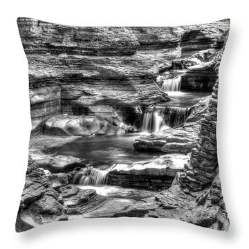 Central Cascade Watkins Glen Throw Pillow