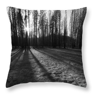 Charred Silence - Yosemite Rim Fire 2013 Throw Pillow