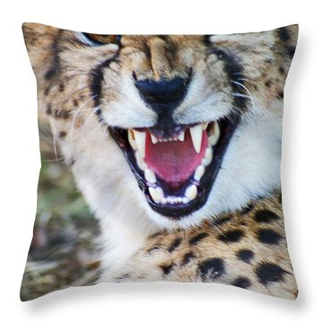 Cheetah With Attitude Throw Pillow