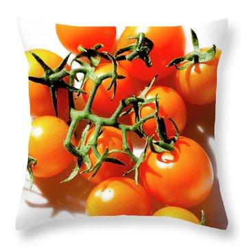 Solanum Lycopersicum Throw Pillows