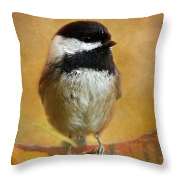 Chickadee Throw Pillow by Angie Vogel
