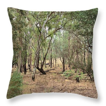 Chino Hills Grove Throw Pillow
