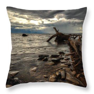 Chippewa  Throw Pillow by Jakub Sisak
