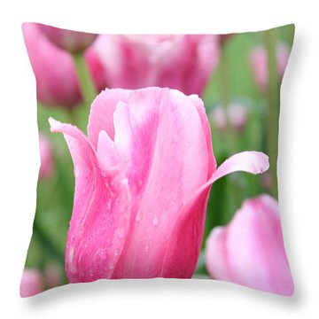 Classic Tulip Throw Pillow by Bill Woodstock