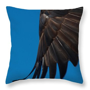 Close-up Of An American Bald Eagle In Flight Throw Pillow