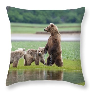 Coastal Brown Bear Sow With Her Two Throw Pillow