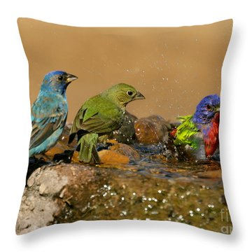 Colorful Bathtime Throw Pillow