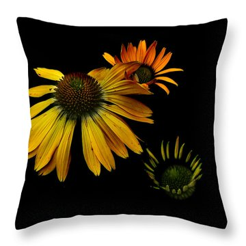 Cones Throw Pillow by Larry Bishop