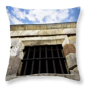 Convict Cell Throw Pillow