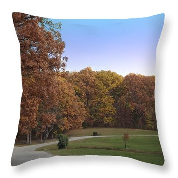 Country Road Throw Pillow by Bill Woodstock