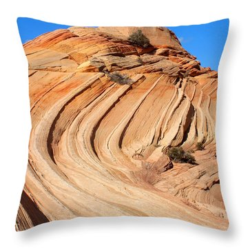 Coyote Buttes Throw Pillow by Farol Tomson