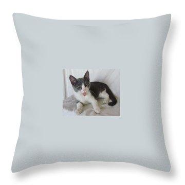Crazy Cat Throw Pillow by Joann Renner