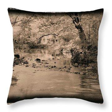 Creek Throw Pillow by John Krakora