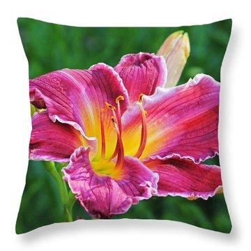 Crimson Day Lily Throw Pillow