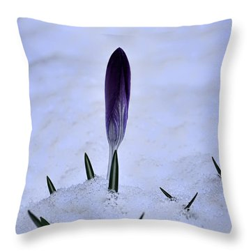 Crocus In Snow Throw Pillow