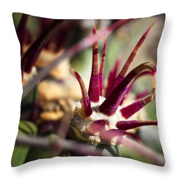 Crown Of Thorns Throw Pillow by Kelley King