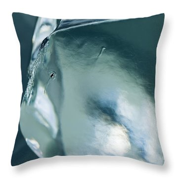 Curves Throw Pillow by Ted Raynor