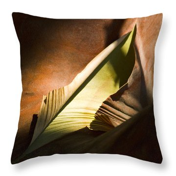 Throw Pillow featuring the photograph Cycle Of Life by Yulia Kazansky