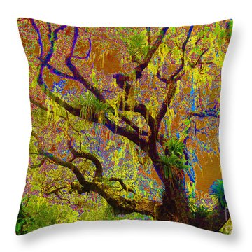 Throw Pillow featuring the photograph Cypress by Ann Johndro-Collins