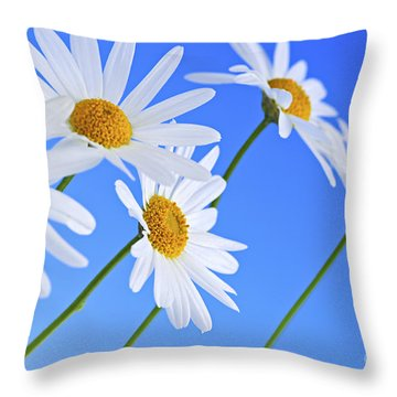 Daisy Flowers On Blue Background Throw Pillow