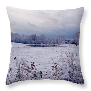 December Snow 005 Throw Pillow by Andy Lawless