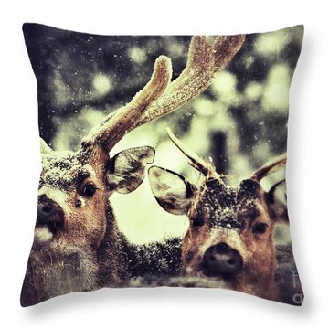 Throw Pillow featuring the photograph Deer In The Snow by Nick  Biemans