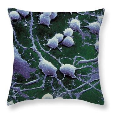 Dendrites Throw Pillow