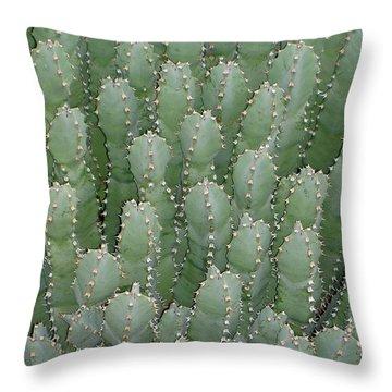 Desert Soldiers Throw Pillow