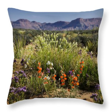 Desert Wildflowers Throw Pillow