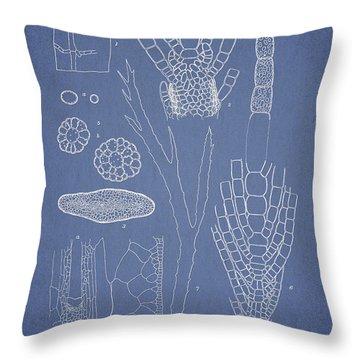 Desmarestia Ligulata Throw Pillow by Aged Pixel