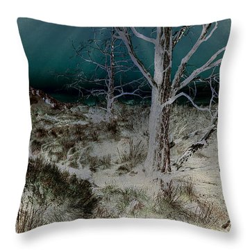 Desolation Throw Pillow by Bonnie Bruno