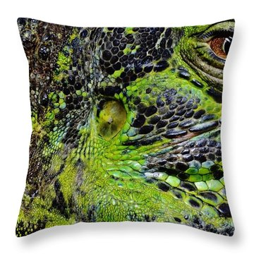 Details Iguana Throw Pillow