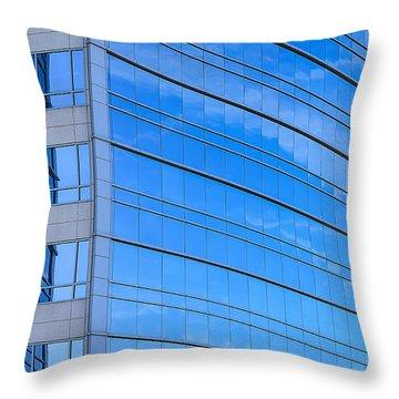 Distinct Throw Pillow