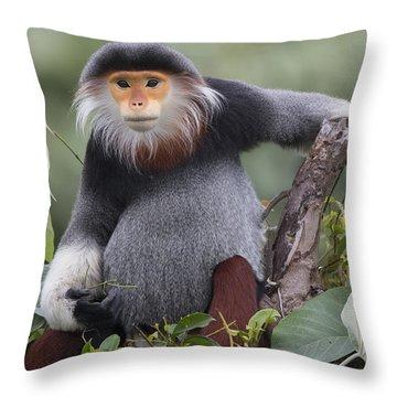 Douc Langur Male Vietnam Throw Pillow