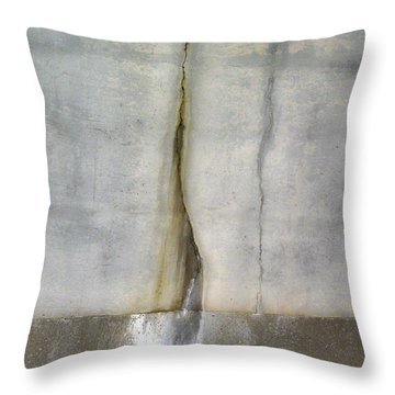 Download Throw Pillow