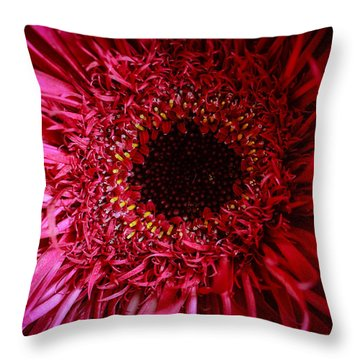 Dressy Throw Pillow by Julie Andel