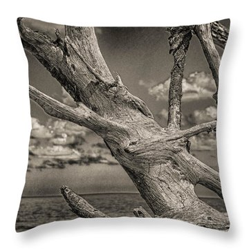 Driftwood Throw Pillow by J Riley Johnson